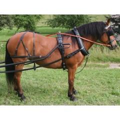 English collar driving harness