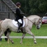 Eesti hobuse päev