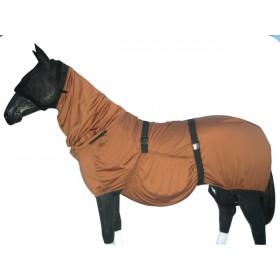 Tekk suveekseemiga hobusele  maskiga