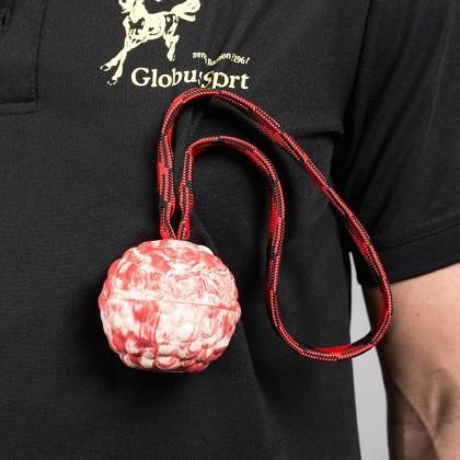 Raddog magnetiga pall