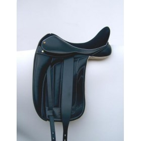 Black Country Vinici dressage