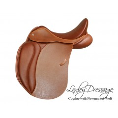 Loxley dressage by Bliss